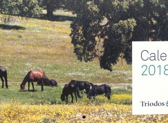 portada del calendario, aparecen unos caballos pastando