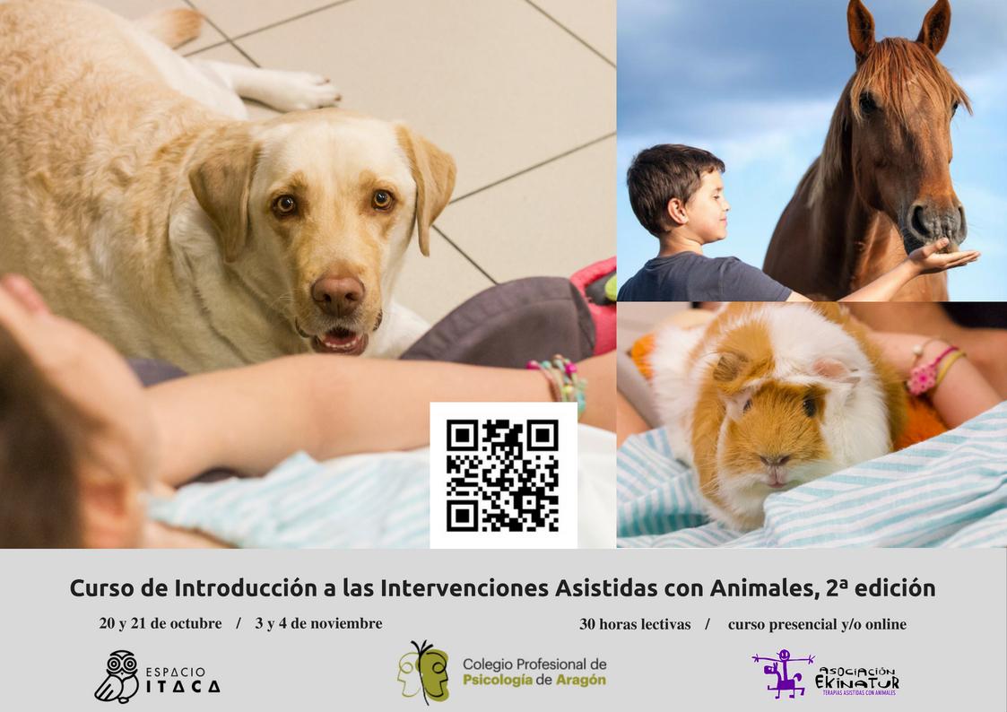 Cartel del curso con 3 sesiones, una con perro, una con caballo y otra con cobaya, también contiene un código QR para acceder a la info