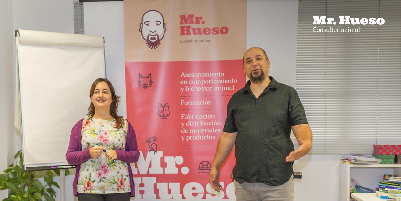 Formaciones Mr. Hueso